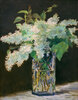 Fliederstrauß (Vase de fleurs, lilas blancs)