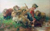 Schafe mit Hütebub