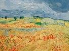 Felder mit blühendem Mohn, Auvers-sur-Oise