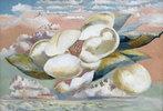 Flug der Magnolie