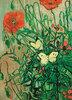 Schmetterlinge und Mohnblumen
