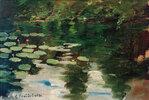 Nymphéas sur l'étang