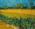 Ansicht von Arles mit Irisblüten