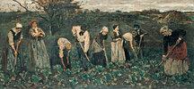 Arbeiter im Rübenfelde