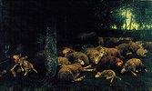 Kranke Schafe