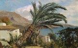 Palmen an der Riviera