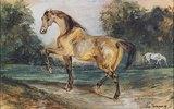 Zwei Pferde auf einer Waldwiese