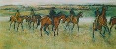 Rennpferde beim Ausritt