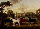 Fünf Rennpferde vor einem englischen Landhaus