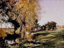 Herbstliches Bach-Ufer