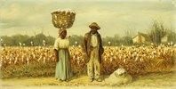 Bei der Baumwollernte