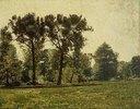 Pappeln bei Goethes Gartenhaus im Schlosspark von Weimar