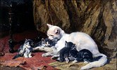 Katze mit vier Jungen auf einem alten Teppich