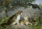 Katzenmutter mit drei Jungen