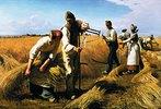 Die Kornernte
