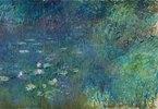 Rechter Teil des großen Seerosenbildes im Musée de l`Orangerie