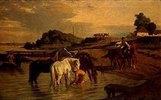Pferde an der Theiss