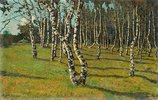 Birkenwäldchen. 1910-er Jahre