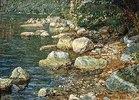 Steine im Bachbett (bei Pallazzuolo)