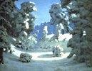 Sonnenlicht auf tief verschneiten Bäumen