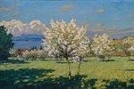 Blühende Kirschbäume