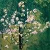 Blühender Baum im Garten