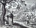 Ruth bei der Ährenlese auf den Feldern des Boas