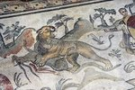 Jagdender Löwe. Mosaikfußboden