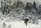 Fuchs in einer Winterlandschaft