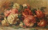 Welkende Rosen