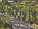 Sonniger Garten mit Pergol