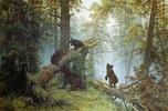 Morgen im Föhrenwald