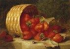 Erdbeeren in einem Korb