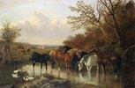 Pferde an einer Wasserstelle