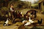 Junge auf einem Bauernhof