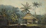 Hütte und Palmen auf der Insel Krakatoa