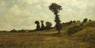 Wiesenplan, rechts Hügelhang mit Büschen und Bäumen