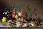 Blumen, Muscheln und Insekten auf einem Steingesims