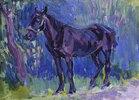 Studie eines Pferdes in Sussex