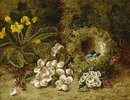 Apfelblüten, eine Primel und ein Vogelnest im Moos