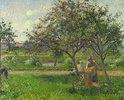 Die Schubkarre, der Obstgarten