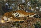 Tiger von Annam