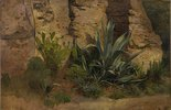Studie einer Agave, Yucca, eines Feigenkaktus und Ginsters, an der Stadtmauer in Rom