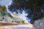 Landschaft mit Olivenbäumen auf Korfu