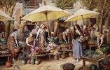 Der Blumenmarkt in Toulon