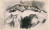 Tiger, auf einem Felsen liegend