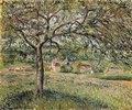 Apfelbaum in Ergany (Pommier à Eragny)