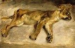 Eine schlafende Löwin