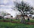 Apfelbäume in Pontoise (Das Haus von Vater Gallien)