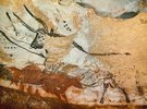 Höhle von Lascaux. Vierter Stier. Unten: Rote Kuh mit Kalb. Großer Saal, rechte Wand. Ca. 17.000 v. Chr